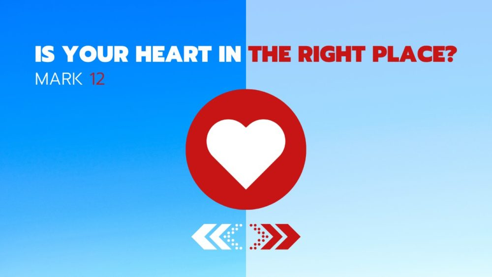 Is Your Heart in the Right Place Image